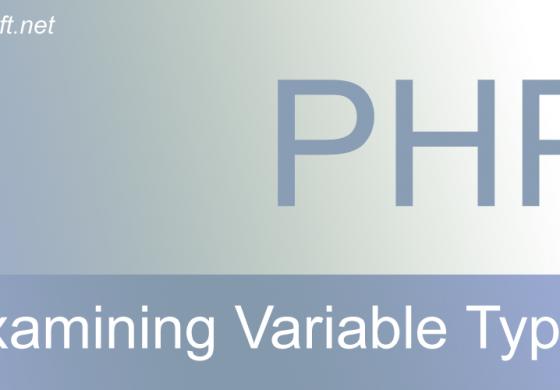 Examining variable types in PHP