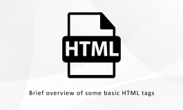 Brief overview of some basic HTML tags